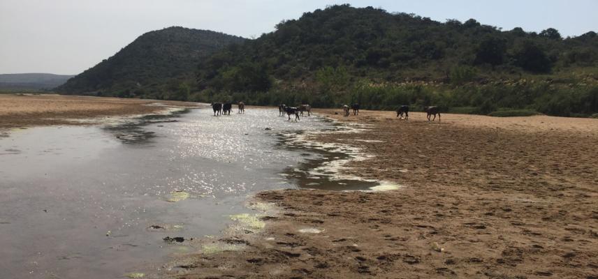 mfolozi river esiyembeni